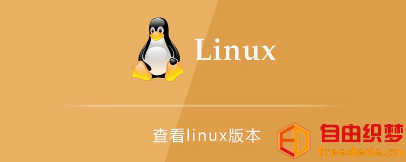 爱上源码网文章怎么查看linux版本的内容插图