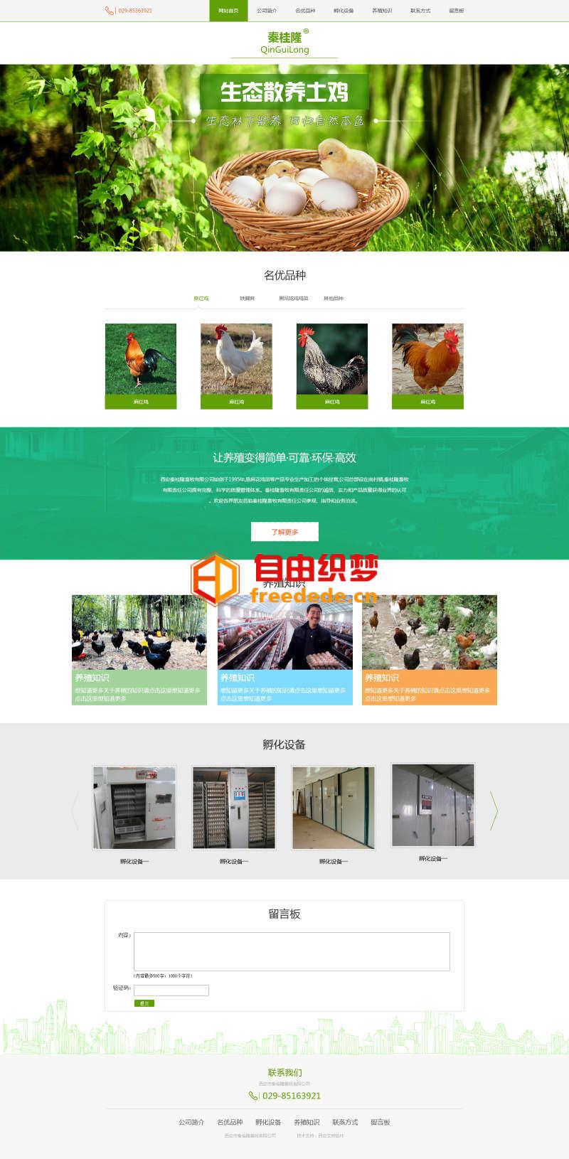 爱上源码网文章绿色扁平风格的养鸡养殖场企业设计模板的内容插图